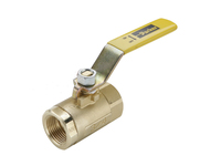 Brass Ball Valve - Vented - VV500P