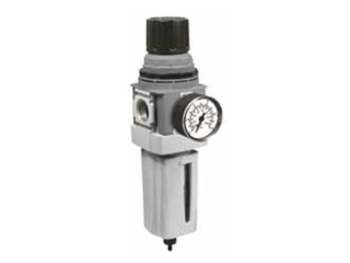 P33 Standard Global Modular Filter/Regulator
